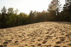 V borovicovém lese, ujihozápadního okraje vsi Písty naNymbursku, seukrývá poušť. Jde opísečnou dunu zjemných písků vzniklou vledových dobách starších čtvrtohor. Je to nanejvýš zajímavé, kdyžjedeme lesem anajednou sepřed námi objeví kopec písku, p