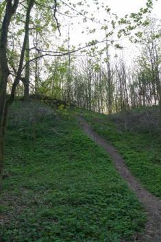 Mydlovar byl založen nejspíše vedruhé pol. 13.století pány zKostomlat (opevněné sídlo, nejspíše hrad stávalo také vnedaleké obci Kostomlaty navyvýšenině namístě dnešního kostela ahřbitova). Jako pustý seuvádí kroku 1561.Hrad patřil mezi hrady vy
